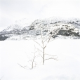 Whiteout, Norway #4